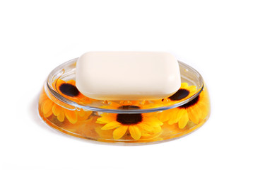 Soap with soap dish
