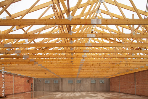 hall roof framework 01