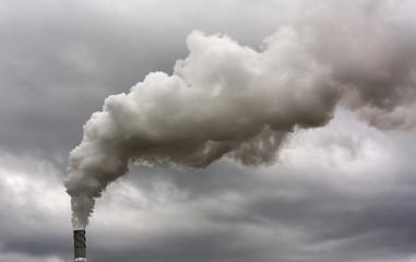 Dyrty smoke