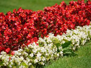 Gartenverzierung