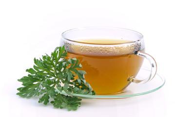Tee Wermut - tea wormwood 04