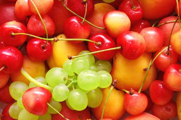 Background of fresh summer fruit