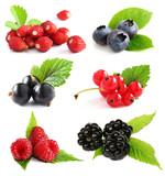 Fototapety Summer berries isolated on white