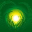 roleta: Magic fern