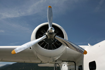 Airplane engine and propeller.