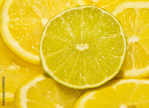 Lime between Lemons
