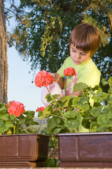 Child watering flowers 2
