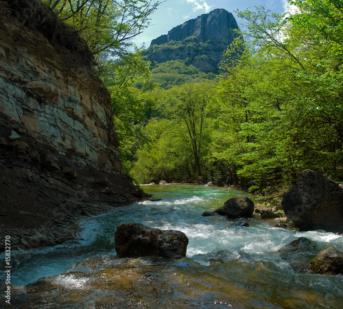 Rapid mountain river in the Crimean canyon
