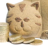 Cat bank poster