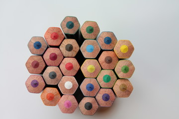 color pencil buds