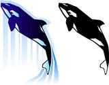 Graphic killer whale illustration poster
