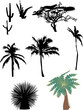 cactus and palm silhouettes