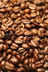 CAFE en rivière de grains