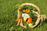 biological vegetables poster