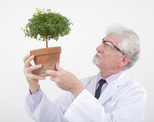 senior scientist holding plant