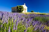 Fototapety chapel, Plateau de Valensole, Provence, France