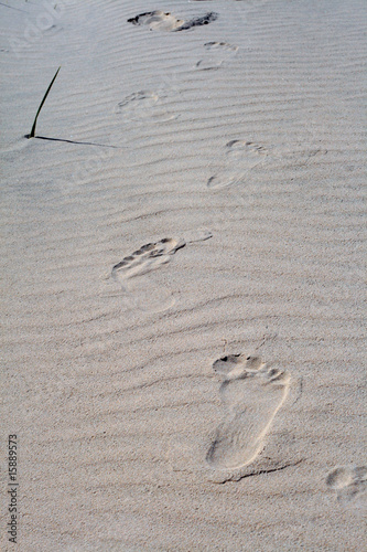 Footprints on the rippled sand at the beach