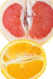 Fresh grapefruit and orange - organic background poster