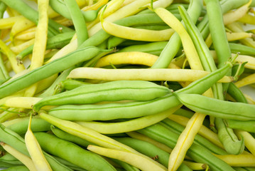 Green and yellow wax bean pods