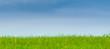 nature, herbe verte, ciel bleu paysage panoramique