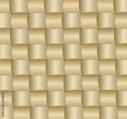 braided surface vector