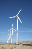 Wind turbines for renewable energy poster
