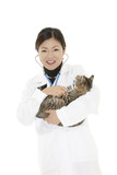 Veterinarian poster