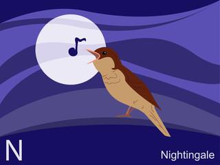 Animal alphabet flash card, N for nightingale