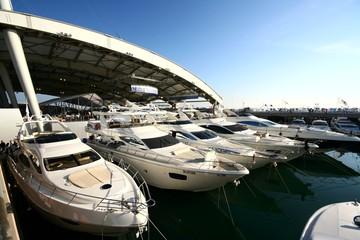 Maxi Yacht