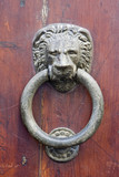 Italy, Tuscany, Wooden door with knocker, close-up