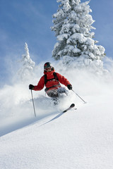 Österreich, Tirol, Kitzbühel, Pass Thurn, Freeride, Skiabfahrt, Mann