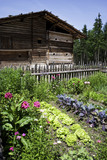 Austria, farmhouse with vegetable garden