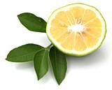 Fototapeta pomarańczowy - pomarańczowy - Owoc