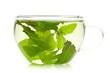 Tee mit grünen Blättern von Pfefferminze