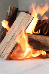 Close-up of firewood burning