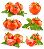 set of red tomato vegetable with cut and green leaves