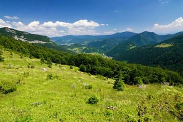 On the hillside...