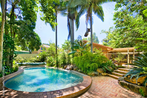 Backyard pool - 16025923