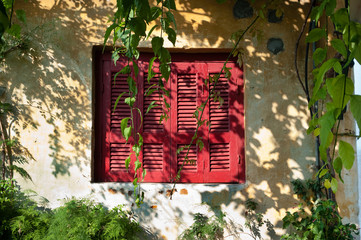 window with red shutter closed and garden