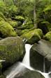 Waserfall - Triberg - Schwarzwald