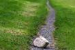 Leinwanddruck Bild - Steine im Weg