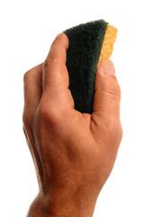 la main et l'éponge