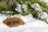 believe stone in snow poster