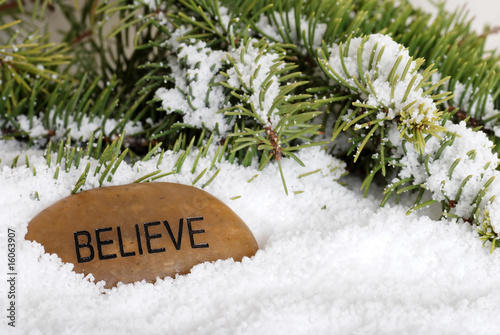 poster of believe stone in snow