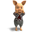 cute cartoon pig with clothes
