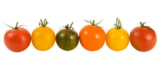 SWEET RAINBOW TOMATOES