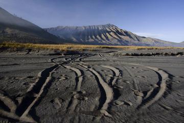 Mt. Bromo volcano, Sea of Sand.