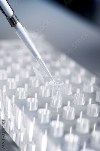 Genetic engineering, using a pipette, close up