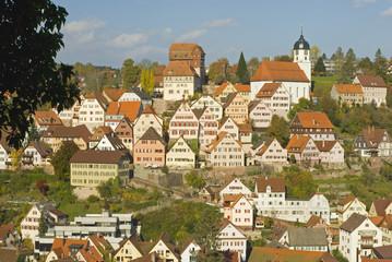 Deutschland, Schwarzwald, Altensteig, Stadtansicht