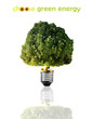 Renewable energy concept. Light bulb with green tree and flower.